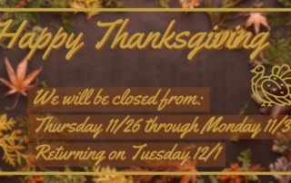 Thanksgiving Hours 2020